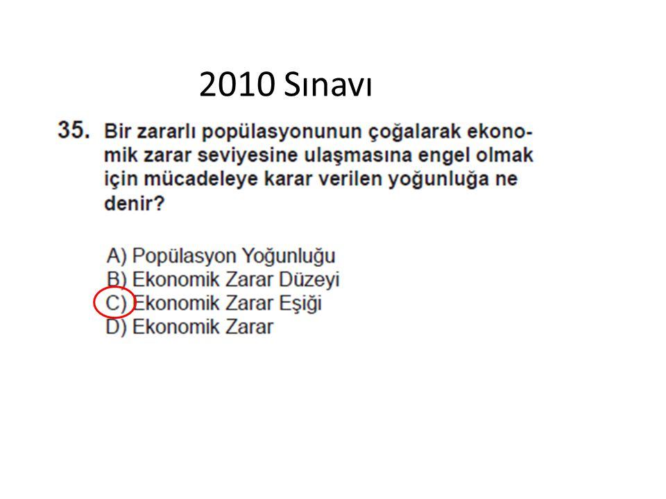 2010 Sınavı