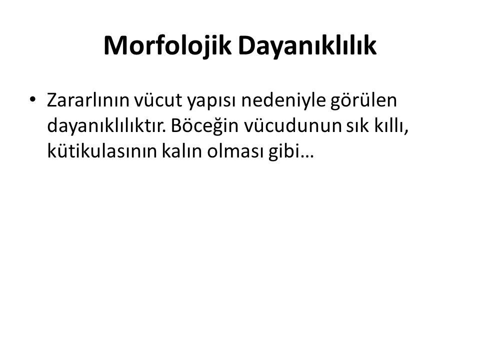 Morfolojik Dayanıklılık Zararlının vücut yapısı nedeniyle görülen dayanıklılıktır. Böceğin vücudunun sık kıllı, kütikulasının kalın olması gibi…