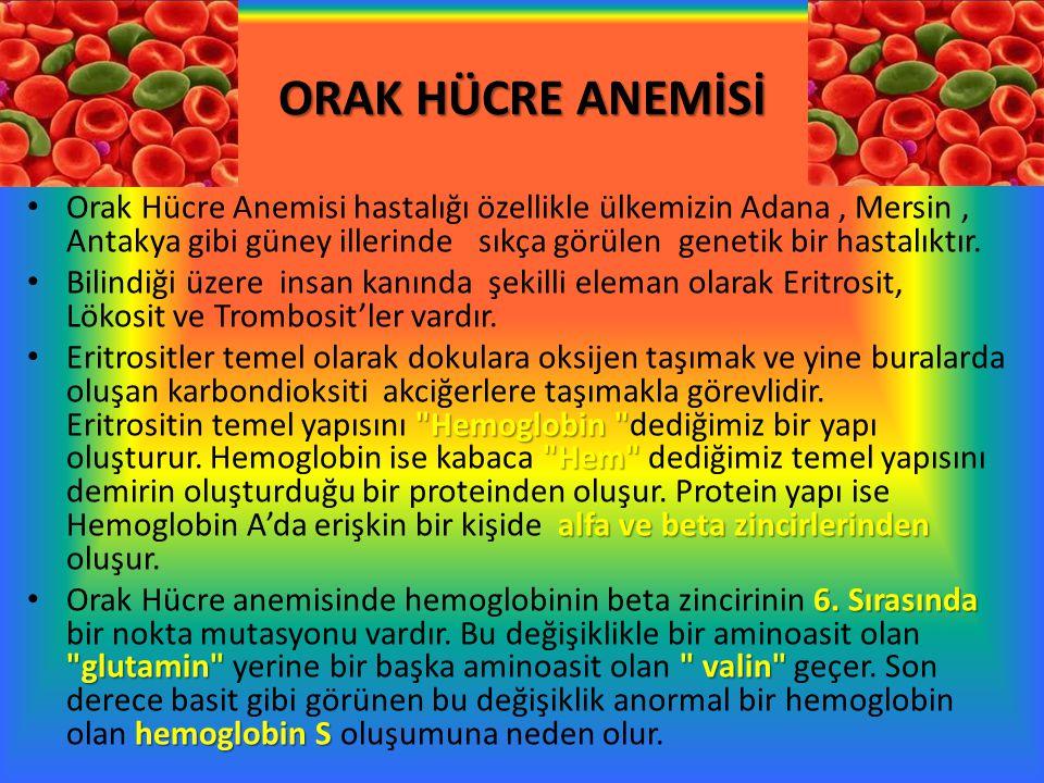 ORAK HÜCRE ANEMİSİ Orak Hücre Anemisi hastalığı özellikle ülkemizin Adana, Mersin, Antakya gibi güney illerinde sıkça görülen genetik bir hastalıktır.