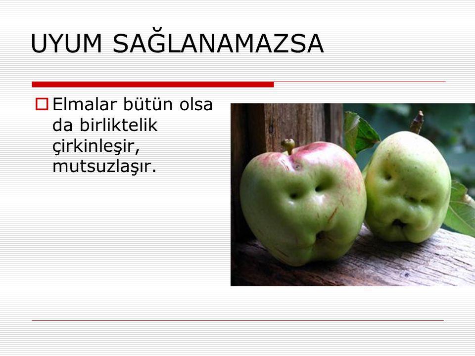 UYUM SAĞLANAMAZSA  Elmalar bütün olsa da birliktelik çirkinleşir, mutsuzlaşır.