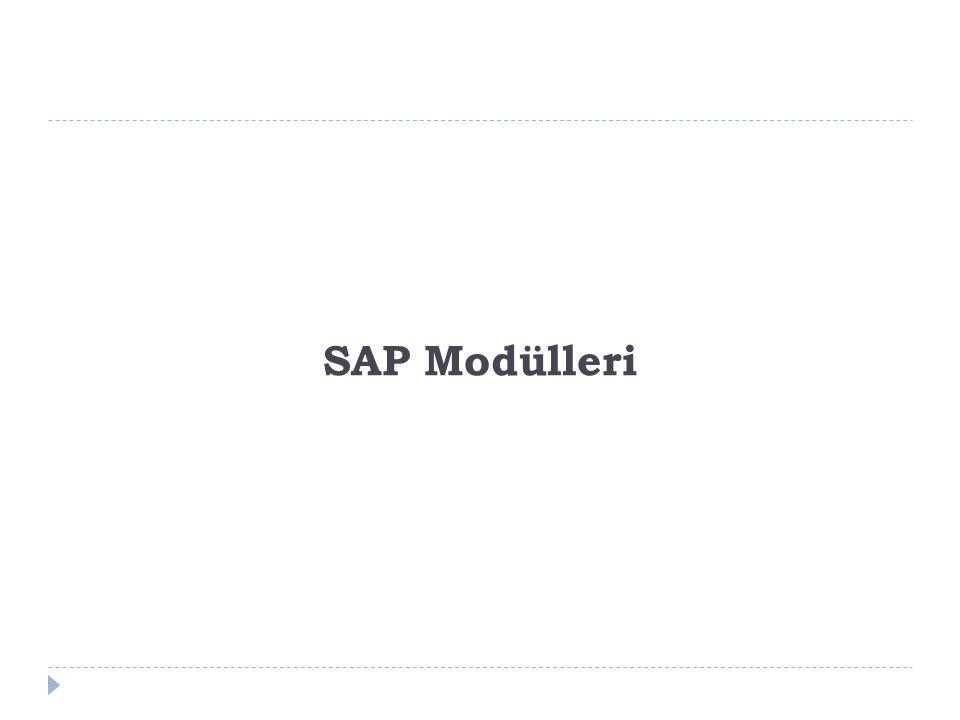 SAP Modülleri