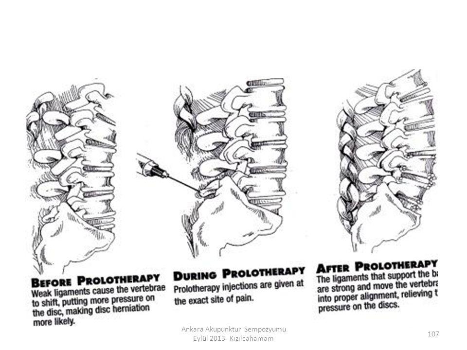 107 Ankara Akupunktur Sempozyumu Eylül 2013- Kızılcahamam
