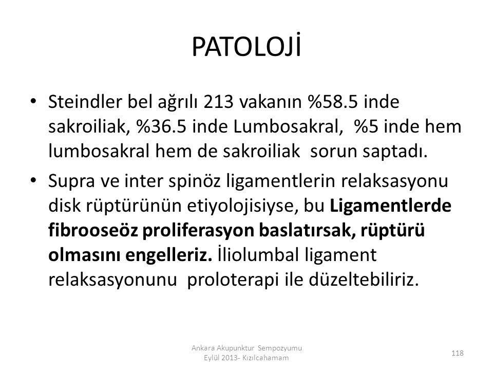 PATOLOJİ Steindler bel ağrılı 213 vakanın %58.5 inde sakroiliak, %36.5 inde Lumbosakral, %5 inde hem lumbosakral hem de sakroiliak sorun saptadı. Supr