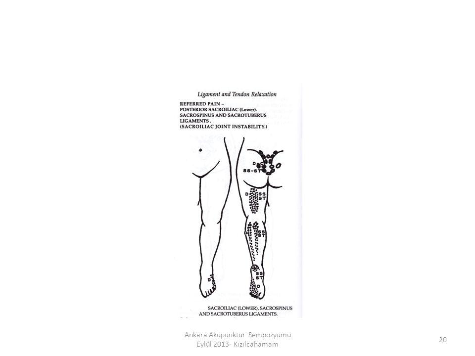 20 Ankara Akupunktur Sempozyumu Eylül 2013- Kızılcahamam