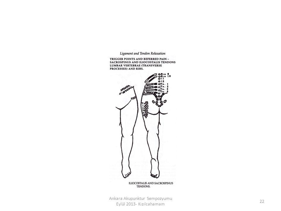 22 Ankara Akupunktur Sempozyumu Eylül 2013- Kızılcahamam
