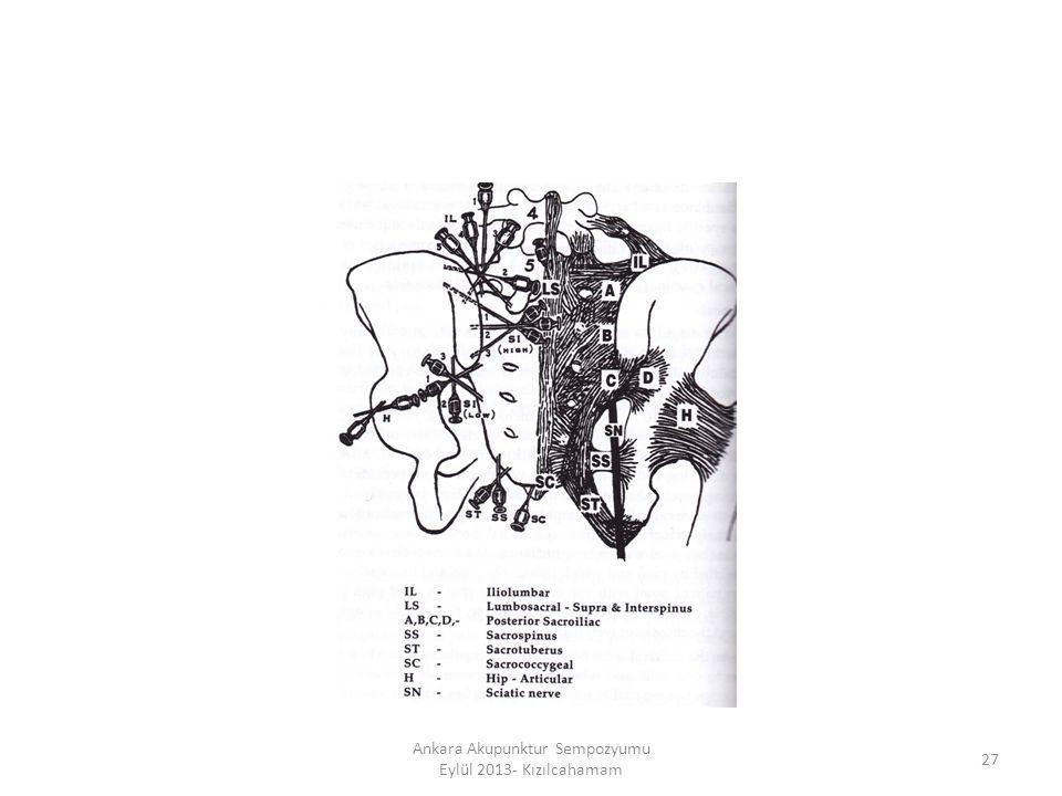 27 Ankara Akupunktur Sempozyumu Eylül 2013- Kızılcahamam