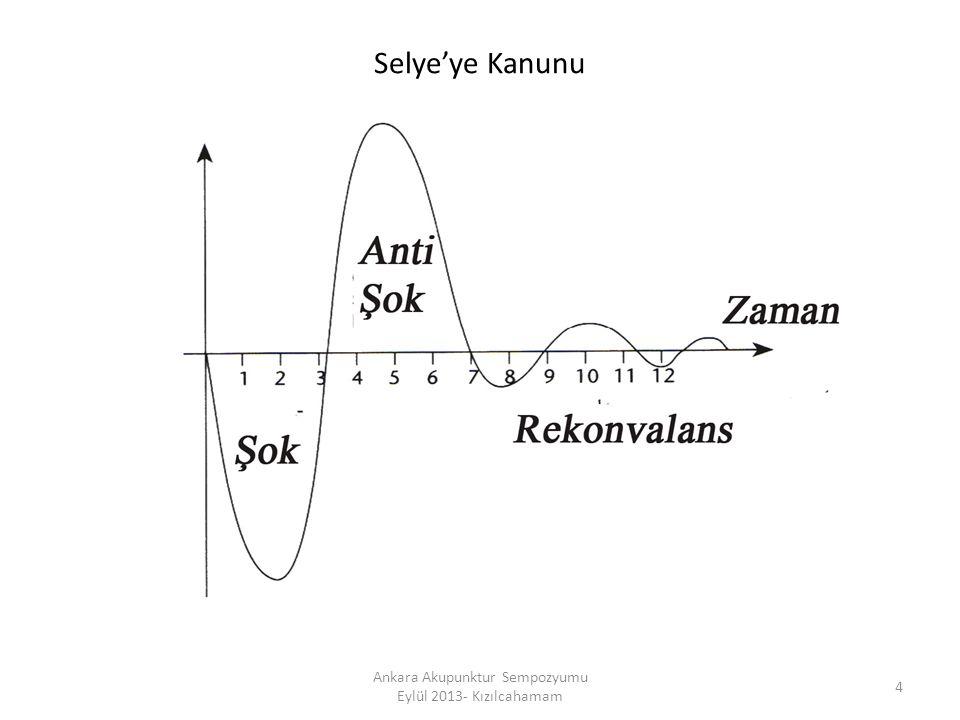 ENTHESİS 55 Ankara Akupunktur Sempozyumu Eylül 2013- Kızılcahamam