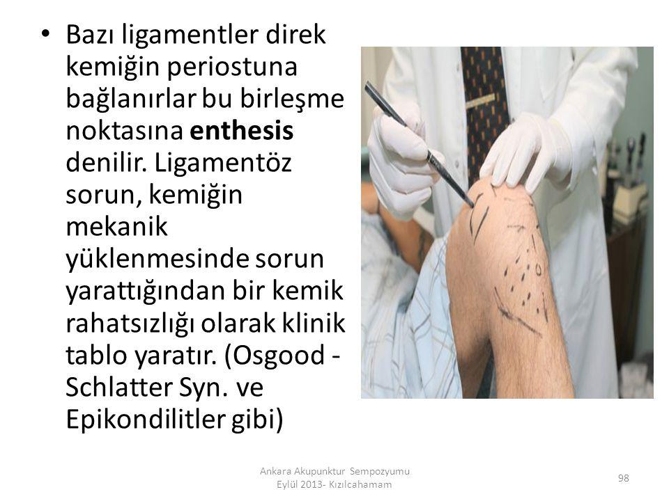Bazı ligamentler direk kemiğin periostuna bağlanırlar bu birleşme noktasına enthesis denilir. Ligamentöz sorun, kemiğin mekanik yüklenmesinde sorun ya