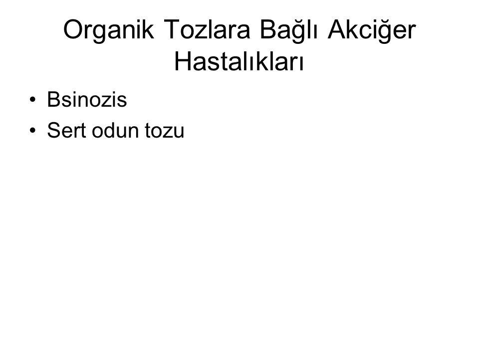 Organik Tozlara Bağlı Akciğer Hastalıkları Bsinozis Sert odun tozu