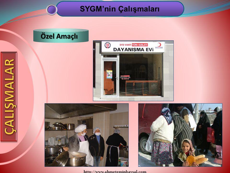 http://www.ahmeteminbaysal.com SYGM'nin Çalışmaları Özel Amaçlı