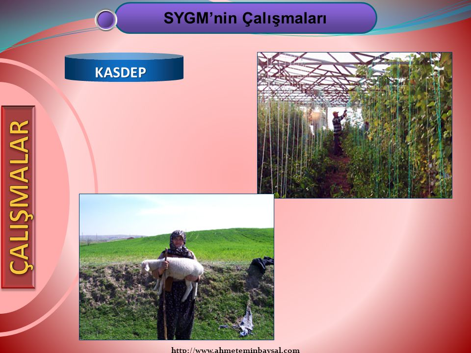 http://www.ahmeteminbaysal.com SYGM'nin Çalışmaları KASDEP