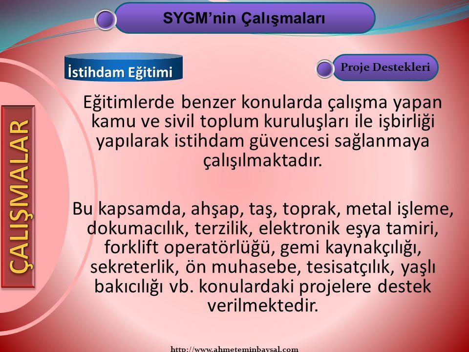 http://www.ahmeteminbaysal.com Eğitimlerde benzer konularda çalışma yapan kamu ve sivil toplum kuruluşları ile işbirliği yapılarak istihdam güvencesi