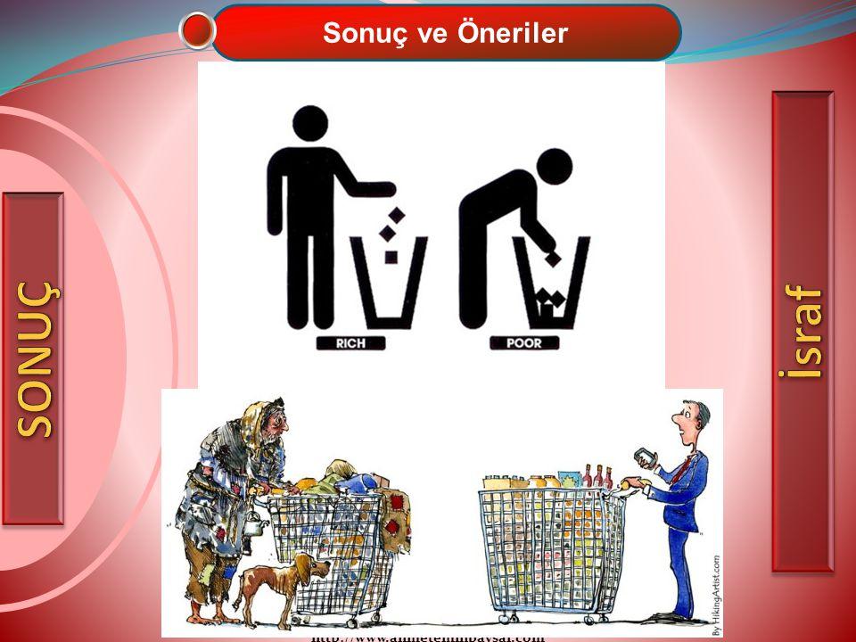 http://www.ahmeteminbaysal.com Sonuç ve Öneriler