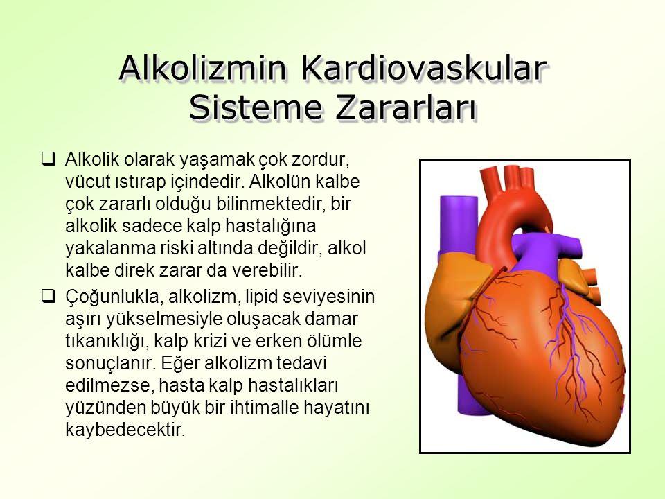 Alkolizmin Kardiovaskular Sisteme Zararları  Alkolik olarak yaşamak çok zordur, vücut ıstırap içindedir.