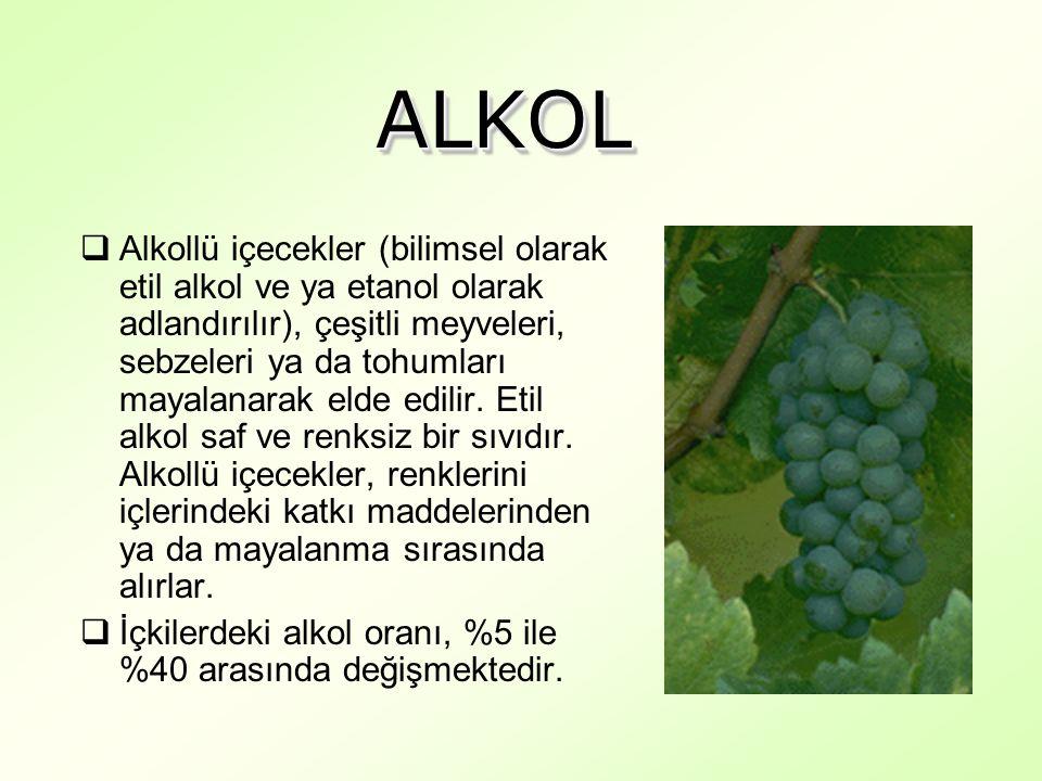 ALKOLALKOL  Alkollü içecekler (bilimsel olarak etil alkol ve ya etanol olarak adlandırılır), çeşitli meyveleri, sebzeleri ya da tohumları mayalanarak elde edilir.