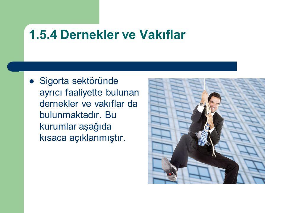 1.5.4 Dernekler ve Vakıflar Sigorta sektöründe ayrıcı faaliyette bulunan dernekler ve vakıflar da bulunmaktadır.