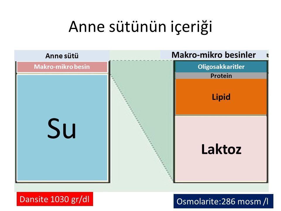 Anne sütünün içeriği Su Makro-mikro besin Anne sütü Makro-mikro besinler Laktoz Lipid Protein Oligosakkaritler Dansite 1030 gr/dl Osmolarite:286 mosm