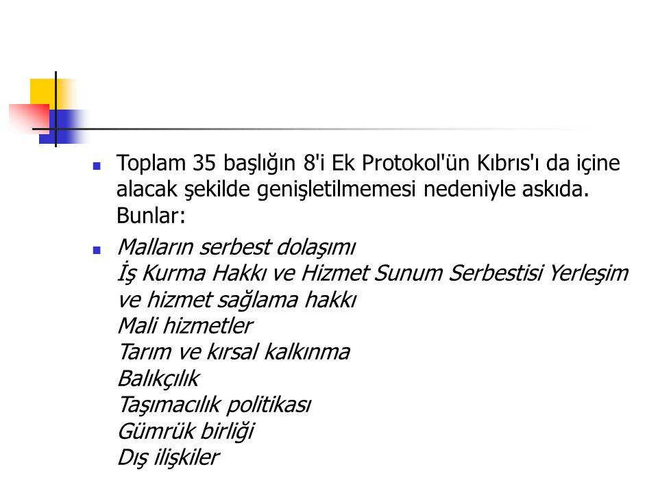 Toplam 35 başlığın 8'i Ek Protokol'ün Kıbrıs'ı da içine alacak şekilde genişletilmemesi nedeniyle askıda. Bunlar: Malların serbest dolaşımı İş Kurma H