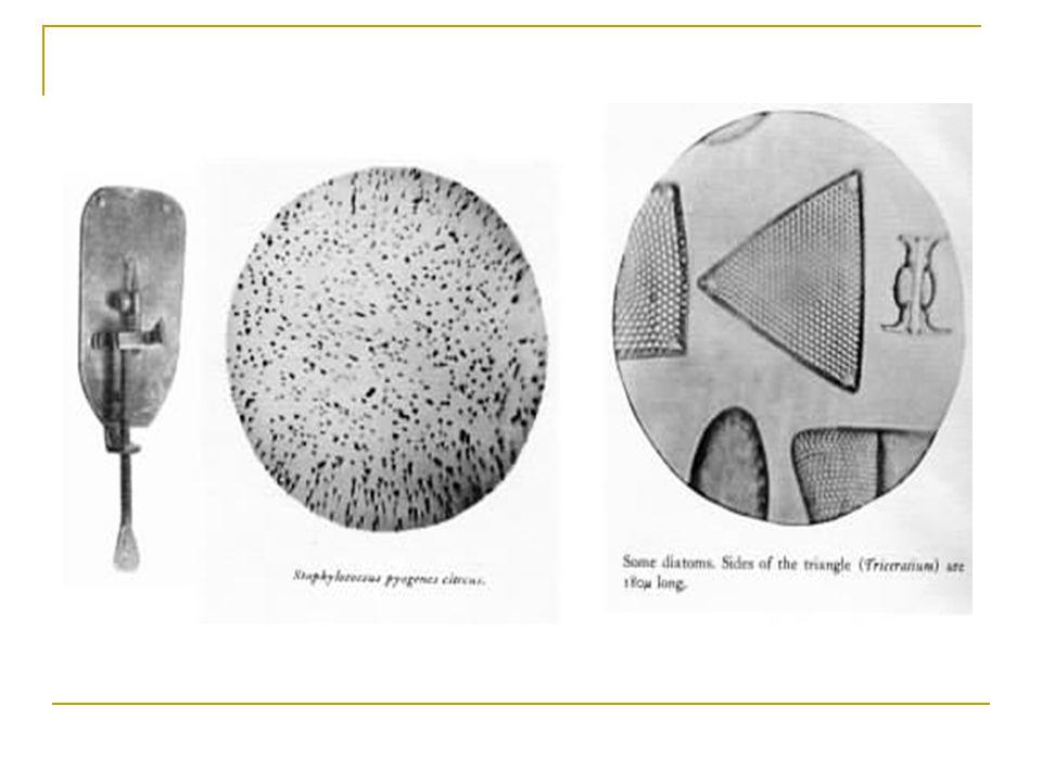 Oküler lens 10 büyütme gücünde Objetif lens 10, 40, 100 büyütme gücündedir Kondansör lens= aşağıdan gelen ışığın örnek üzerine odaklanmasını sağlar 10x10 ve 10x40 lık büyütmeler ile boyasız örnekler 10x100 büyütme ile boyalı örnekler incelenir
