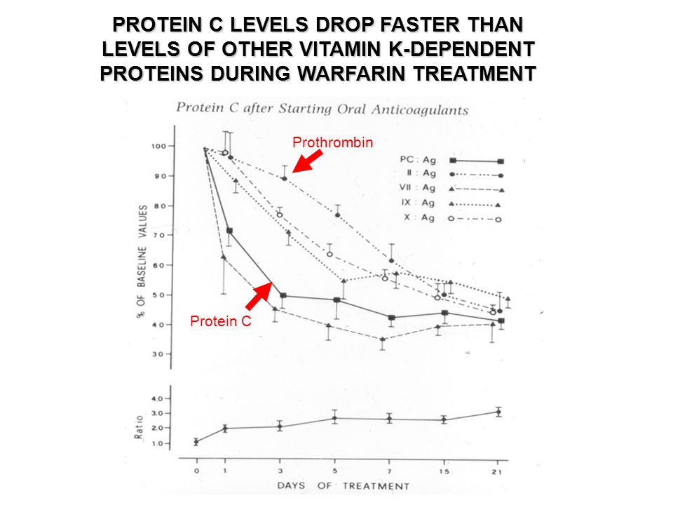 PROTEIN C LEVELS DROP FASTER THAN LEVELS OF OTHER VITAMIN K-DEPENDENT PROTEINS DURING WARFARIN TREATMENT Protein C Prothrombin