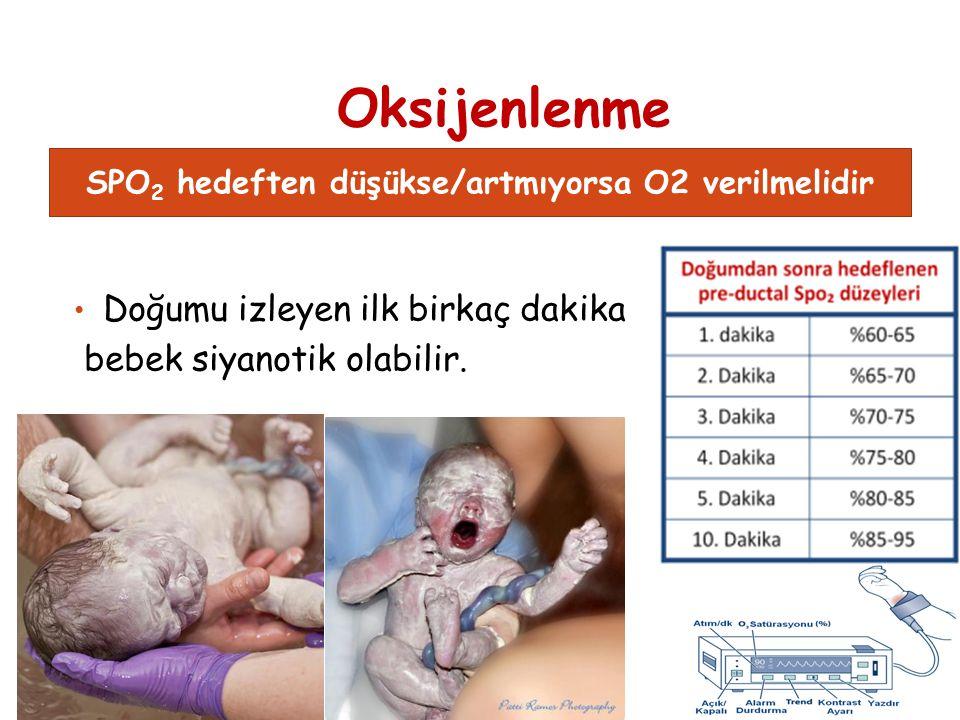 Oksijenlenme Doğumu izleyen ilk birkaç dakika bebek siyanotik olabilir.