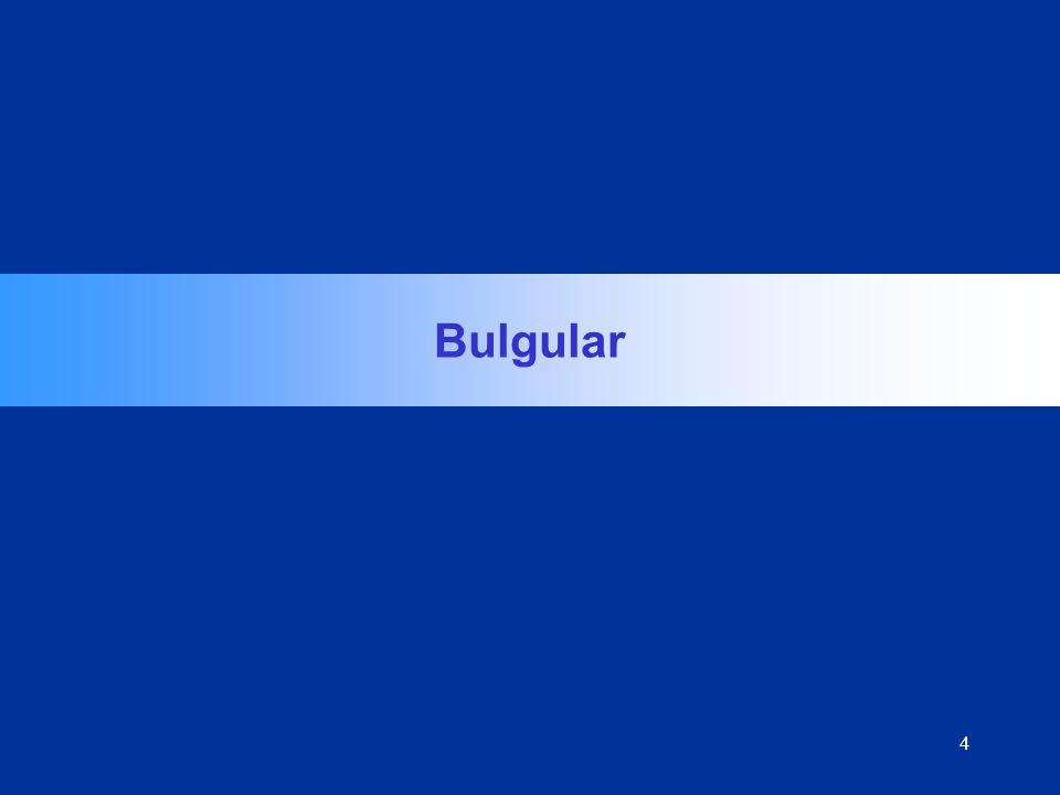4 Bulgular