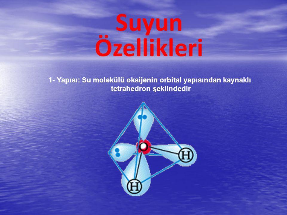 Paylaşılmayan elektronlar suyun kovalent bağının bir parçası değildir Su molekülü polar kovalent bağlara sahiptir Suyun bağ yapan elektronları Eşit şekilde dağılmaz.
