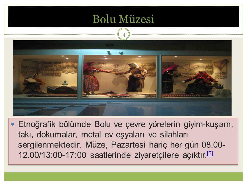 Bolu Müzesi Etnoğrafik bölümde Bolu ve çevre yörelerin giyim-kuşam, takı, dokumalar, metal ev eşyaları ve silahları sergilenmektedir.
