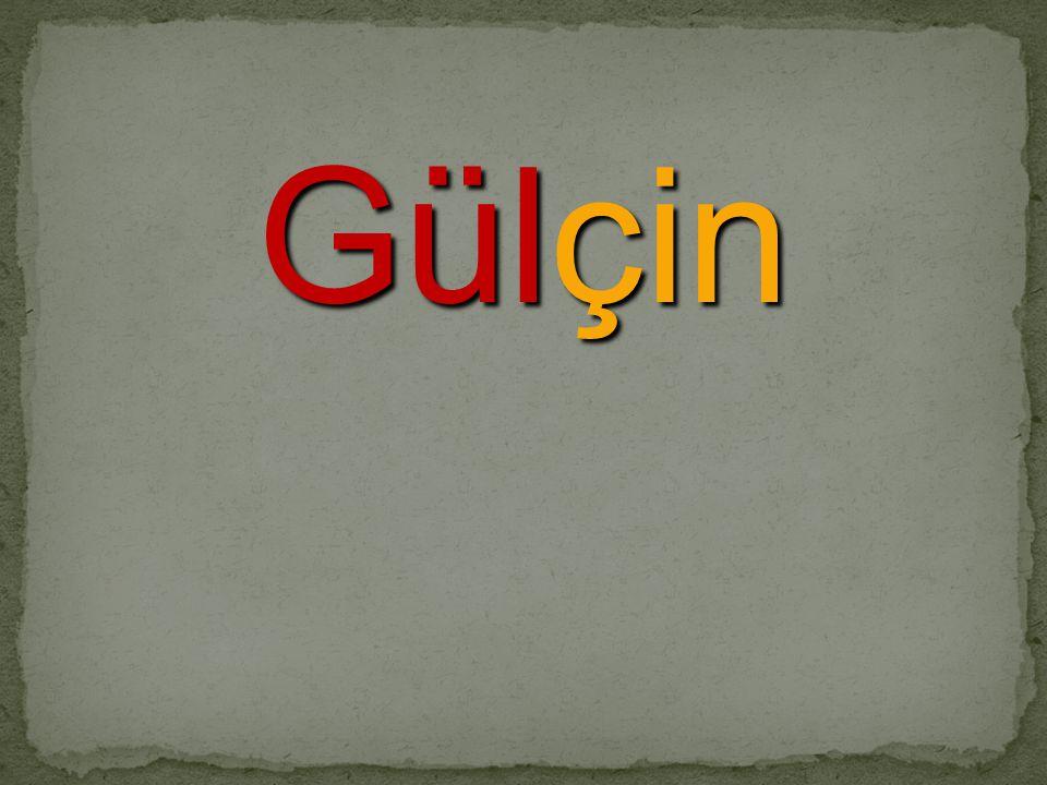 Gülçin
