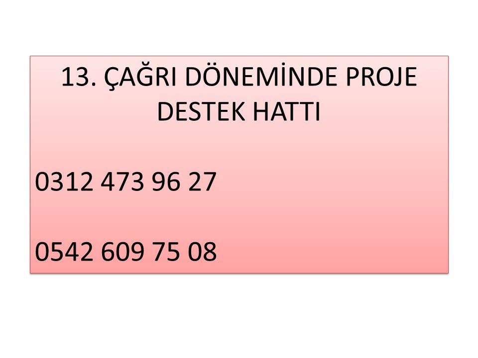 13.ÇAĞRI DÖNEMİNDE PROJE DESTEK HATTI 0312 473 96 27 0542 609 75 08 13.