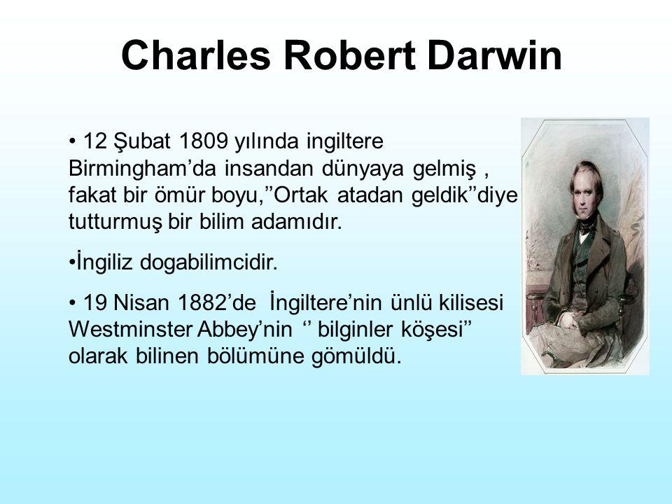 Charles Robert Darwin 12 Şubat 1809 yılında ingiltere Birmingham'da insandan dünyaya gelmiş, fakat bir ömür boyu,''Ortak atadan geldik''diye tutturmuş