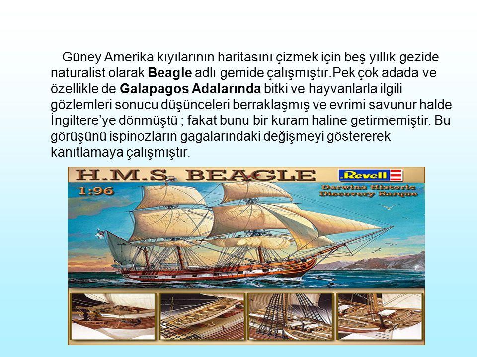 Güney Amerika kıyılarının haritasını çizmek için beş yıllık gezide naturalist olarak Beagle adlı gemide çalışmıştır.Pek çok adada ve özellikle de Gala