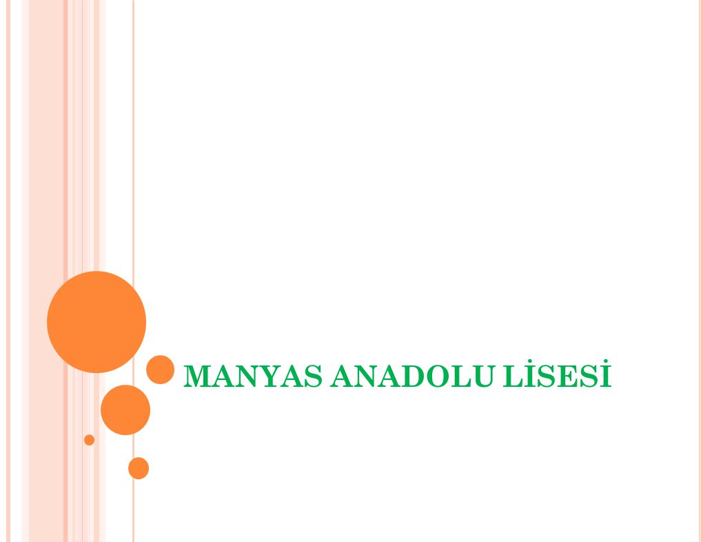 MANYAS ANADOLU LİSESİ