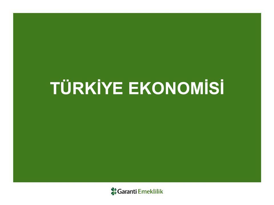 Likit ve Döviz Fonları 2013'te Euro/TL %7.5, Dolar/TL %6.7 değer kazanmıştır.