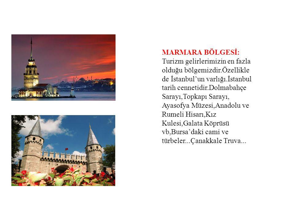 MARMARA BÖLGESİ: Turizm gelirlerimizin en fazla olduğu bölgemizdir.Özellikle de İstanbul'un varlığı.İstanbul tarih cennetidir.Dolmabahçe Sarayı,Topkap