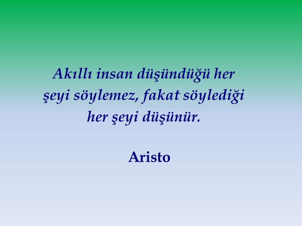 Akıllı insan düşündüğü her şeyi söylemez, fakat söylediği her şeyi düşünür. Aristo
