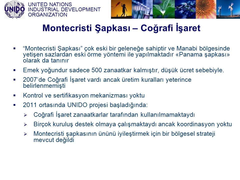 "UNITED NATIONS INDUSTRIAL DEVELOPMENT ORGANIZATION  ""Montecristi Şapkası"" çok eski bir geleneğe sahiptir ve Manabi bölgesinde yetişen sazlardan eski"