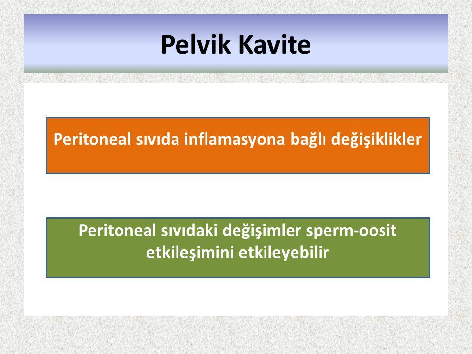 Pelvik Kavite Peritoneal sıvıda inflamasyona bağlı değişiklikler Peritoneal sıvıdaki değişimler sperm-oosit etkileşimini etkileyebilir