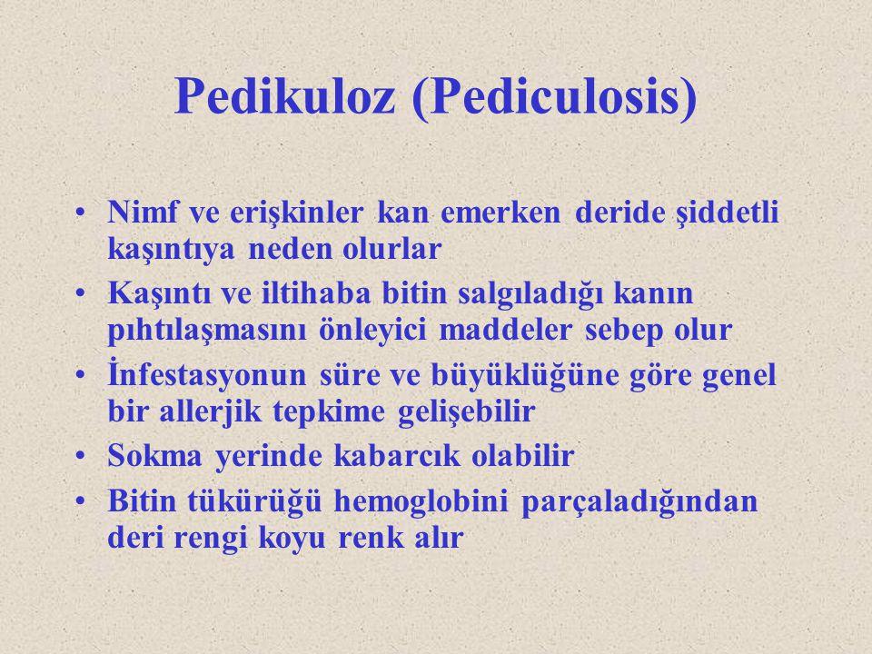 Pedikuloz (Pediculosis) Nimf ve erişkinler kan emerken deride şiddetli kaşıntıya neden olurlar Kaşıntı ve iltihaba bitin salgıladığı kanın pıhtılaşmas