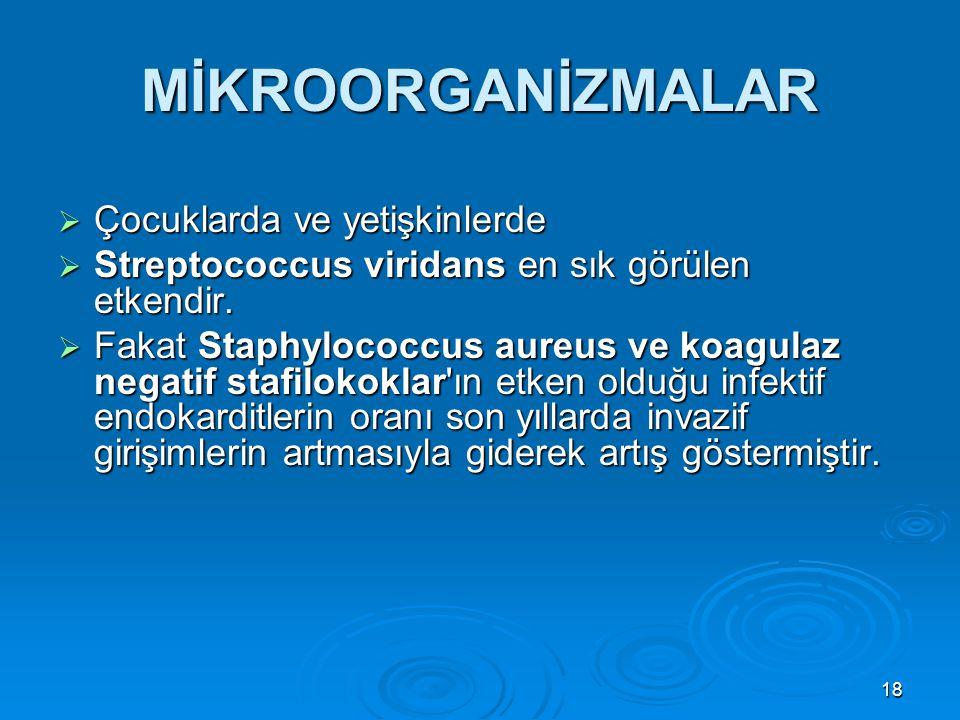 18 MİKROORGANİZMALAR  Çocuklarda ve yetişkinlerde  Streptococcus viridans en sık görülen etkendir.  Fakat Staphylococcus aureus ve koagulaz negatif