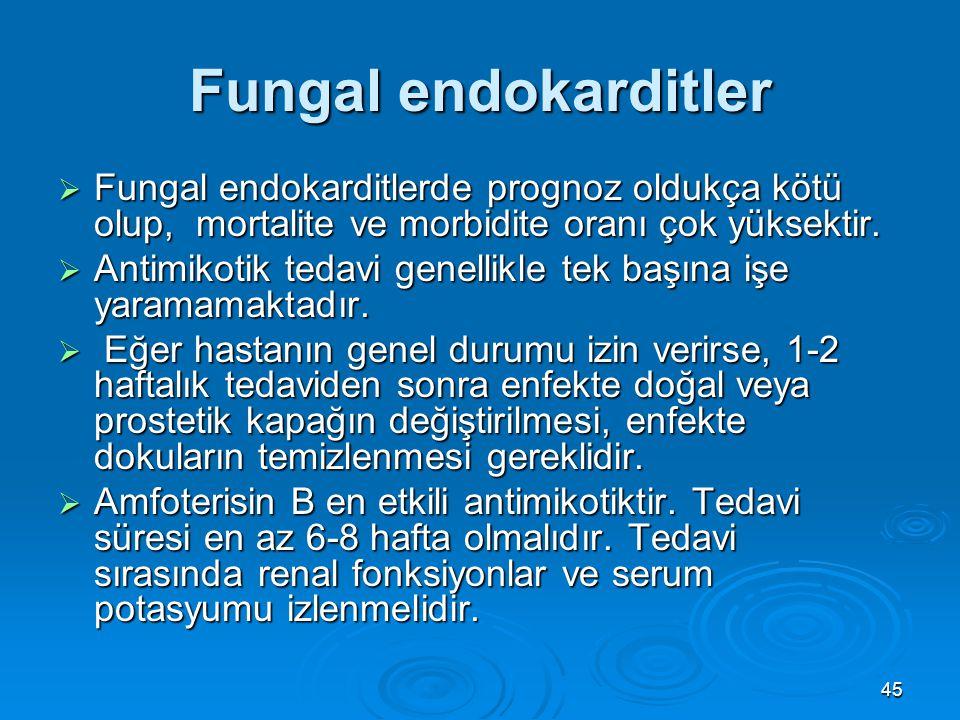 45 Fungal endokarditler  Fungal endokarditlerde prognoz oldukça kötü olup, mortalite ve morbidite oranı çok yüksektir.  Antimikotik tedavi genellikl