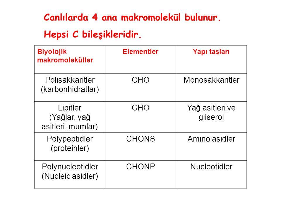 Biyolojik makromoleküller ElementlerYapı taşları Polisakkaritler (karbonhidratlar) CHOMonosakkaritler Lipitler (Yağlar, yağ asitleri, mumlar) CHOYağ a