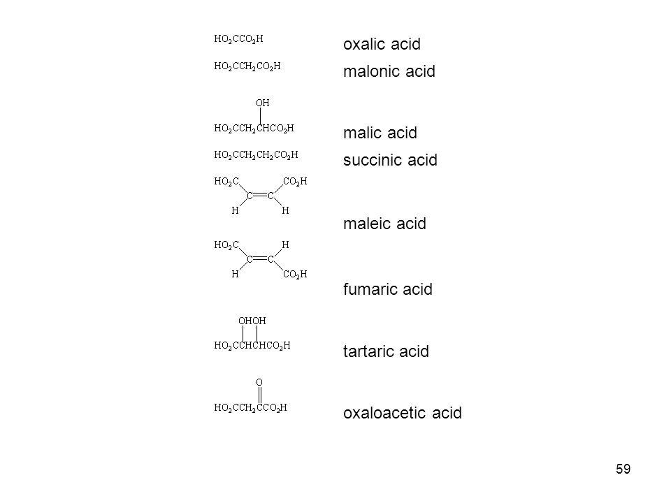 59 oxalic acid malonic acid malic acid succinic acid maleic acid fumaric acid tartaric acid oxaloacetic acid