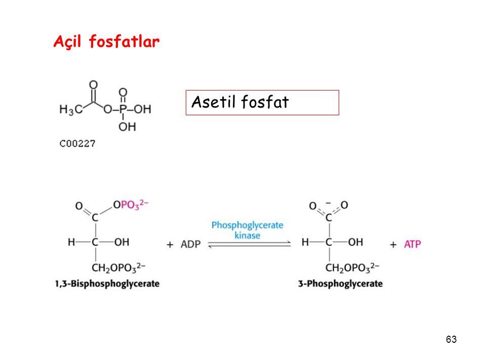 63 Açil fosfatlar Asetil fosfat
