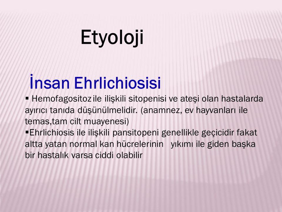 İnsan Ehrlichiosisi  Hemofagositoz ile ilişkili sitopenisi ve ateşi olan hastalarda ayırıcı tanıda düşünülmelidir. (anamnez, ev hayvanları ile temas,