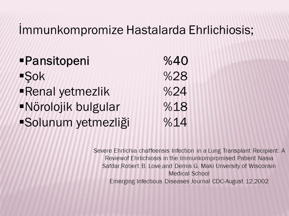 İmmunkompromize Hastalarda Ehrlichiosis;  Pansitopeni%40  Şok %28  Renal yetmezlik%24  Nörolojik bulgular%18  Solunum yetmezliği %14 Severe Ehrli