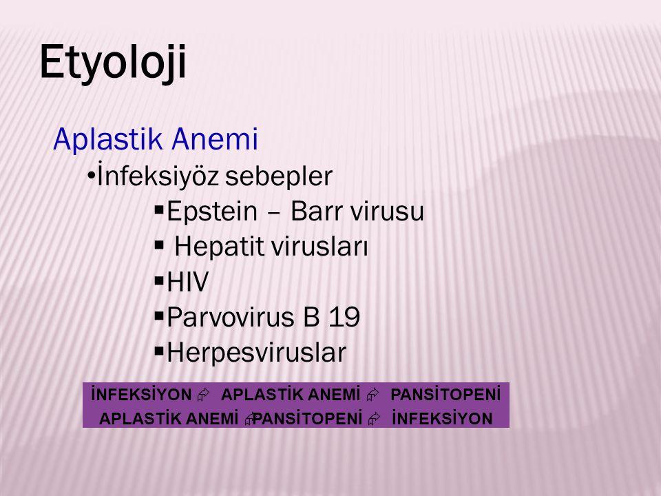 Aplastik Anemi İnfeksiyöz sebepler  Epstein – Barr virusu  Hepatit virusları  HIV  Parvovirus B 19  Herpesviruslar Etyoloji İNFEKSİYON  APLASTİ