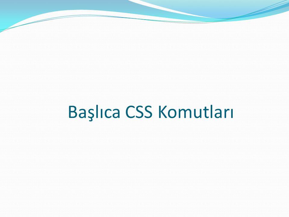 Başlıca CSS Komutları