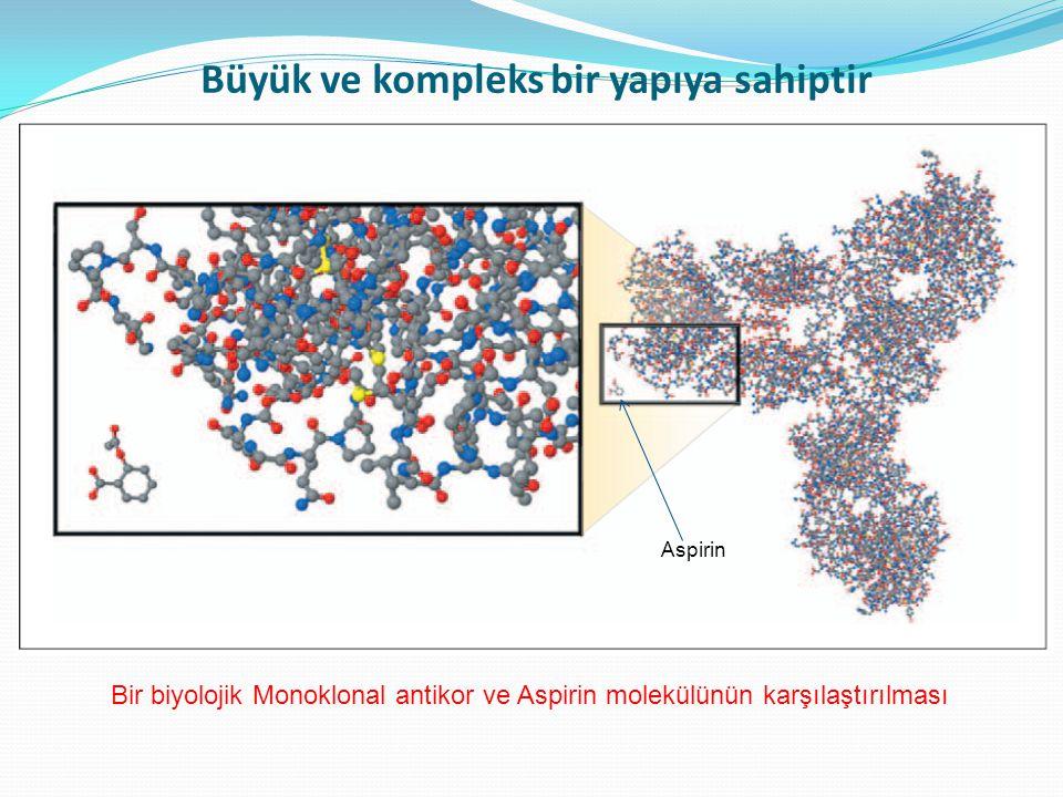 Klasik Küçük Farmasötik Molekül Klasik Küçük Farmasötik Molekül Biyolojik Biyolojiklerin yapısı nisbeten zayıf bağlarla bağlıdır Güçlü kimyasal bağlarla bağlı iyi tanımlanmış stabil yapı Nisbeten zayıf bağlar temelinde uzaysal bir yapı (sekonder & tersiyer)