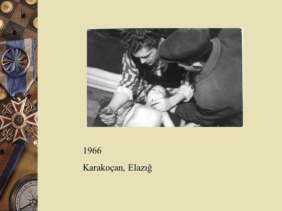 1966 Karakoçan, Elazığ